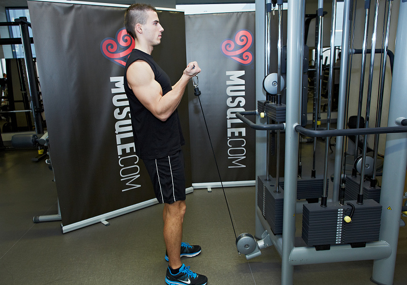 Standing Biceps Cable Curl - MUSQLE