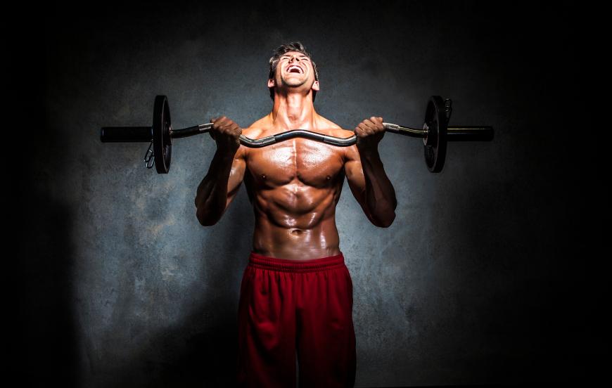 Periodization in bodybuilding – Part 1 - MUSQLE